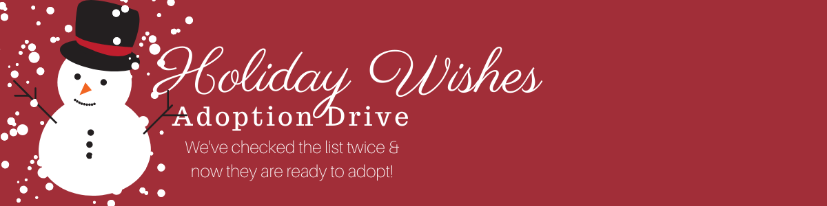 Adopt a Student's Wishes!